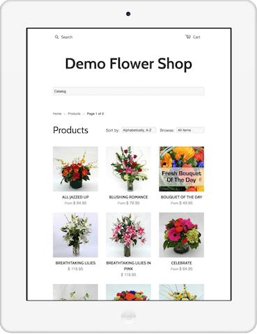 Shopify site on iPad